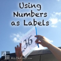 Why We Use Numbers as Labels